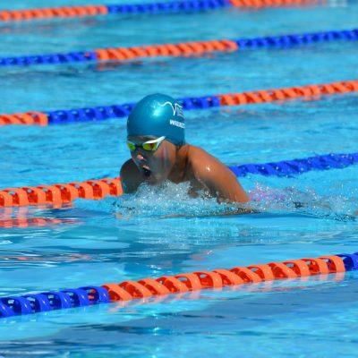 swimming-1706052_960_720
